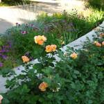 """<a href=""""http://bluelinelandscape.com/gallery-gardens/"""">Gardens</a>"""